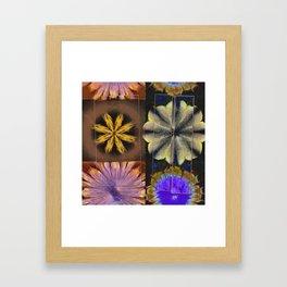 Overequip Taste Flower  ID:16165-062109-37511 Framed Art Print