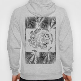 Shells of the Time Hoody