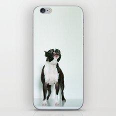 The Howler iPhone & iPod Skin