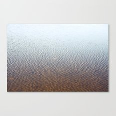 Silent water Canvas Print