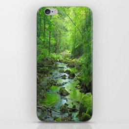 Rocky Forest Creek iPhone Skin