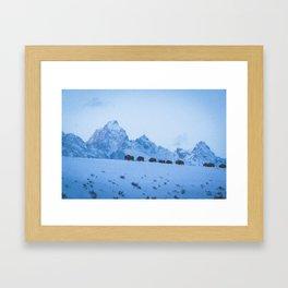 Snowy Bison Framed Art Print
