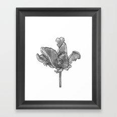 Monochromatic Orchid Framed Art Print