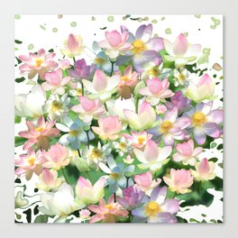 Lotus bloom Canvas Print