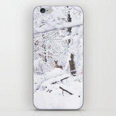 Bonnes Fêtes! iPhone & iPod Skin