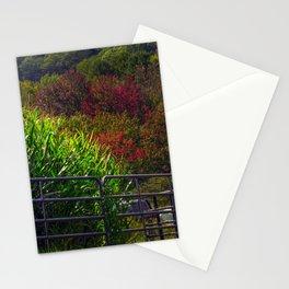 Ricker Hill Corn Maze (6) Stationery Cards