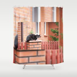 lonely stray black cat sitting Shower Curtain