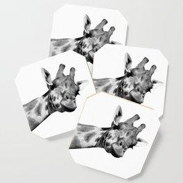 Black and white giraffe Coaster