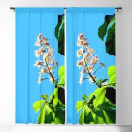 Chestnut blossom Blackout Curtain