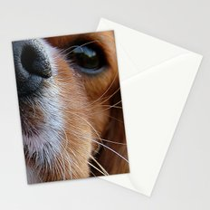 Nosey Dog Stationery Cards