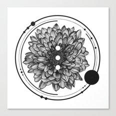 Elliptical I Canvas Print
