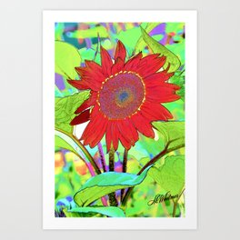 Sunflower Brillance Art Print