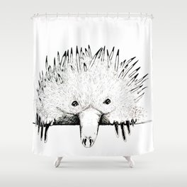 Nudge in Echidna Shower Curtain