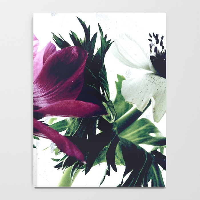 The Anemones Notebook