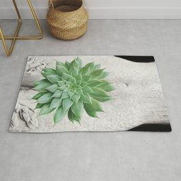 A Succulent Woman Rug