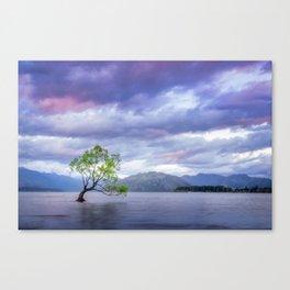 Wanaka Tree at Sunset Canvas Print