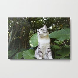 Cat and tropical plants Metal Print