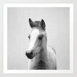 Baby Horse - Black & White Art Print