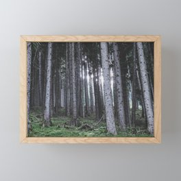 Fairest Forest Framed Mini Art Print
