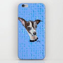Mia the Italian Greyhound Dog iPhone Skin