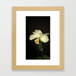 shriveled white Framed Art Print