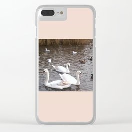 Swans 4 with other birds Clear iPhone Case