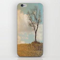 Single Tree iPhone & iPod Skin