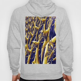 Corn Field Hoody