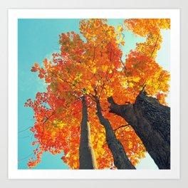 Famous fall 8 Art Print