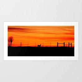 Deer at Sunset Art Print