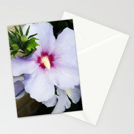 Mother's Flower Stationery Cards