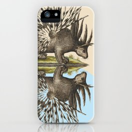 Who Are You Calling Porky? iPhone Case