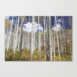 Blue Skies Over Aspen Canvas Print