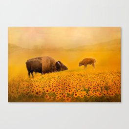 Bison Dad and Baby in Sunflowers Canvas Print