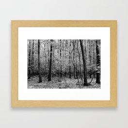 Lenta Conversazione 02 Framed Art Print