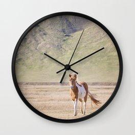 Icelandic Paint Horse Photograph Wall Clock