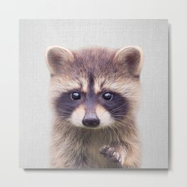 Raccoon - Colorful Metal Print