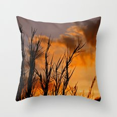 Almost Gone Throw Pillow