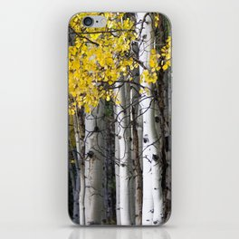 Yellow, Black, and White // Aspen Trees in Crested Butte iPhone Skin