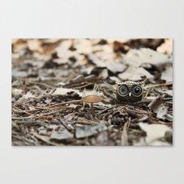 tiny things Canvas Print