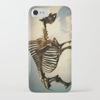 buffalo iPhone & iPod Cases featuring Buffalo by Mandy Chesnut