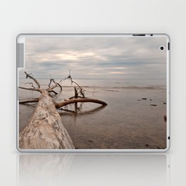 Dead Tree Bay Laptop & iPad Skin