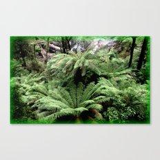 Ferns & Waterfall Canvas Print