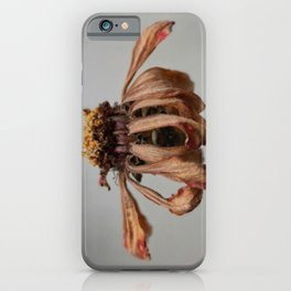Beauty in Autumn iPhone Case