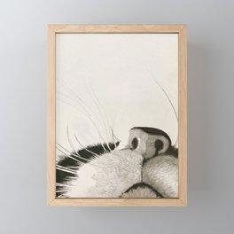 Kitten Whiskers Framed Mini Art Print