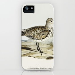 Great Sandpiper (Schoeniclus magnus) illustrated by Elizabeth Gould (1804–1841) for John Gould's (18 iPhone Case
