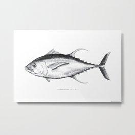 Yellowfin Tuna -  Detailed Watercolor Fish Illustration Black + White Vector Image Metal Print