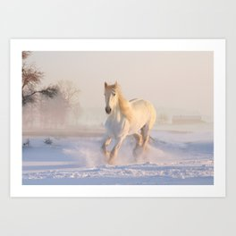 Beautiful White Horse Galloping in the Snow Art Print