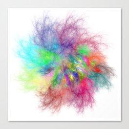 Feel The Rainbow Canvas Print