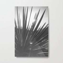 Desert Flare Metal Print